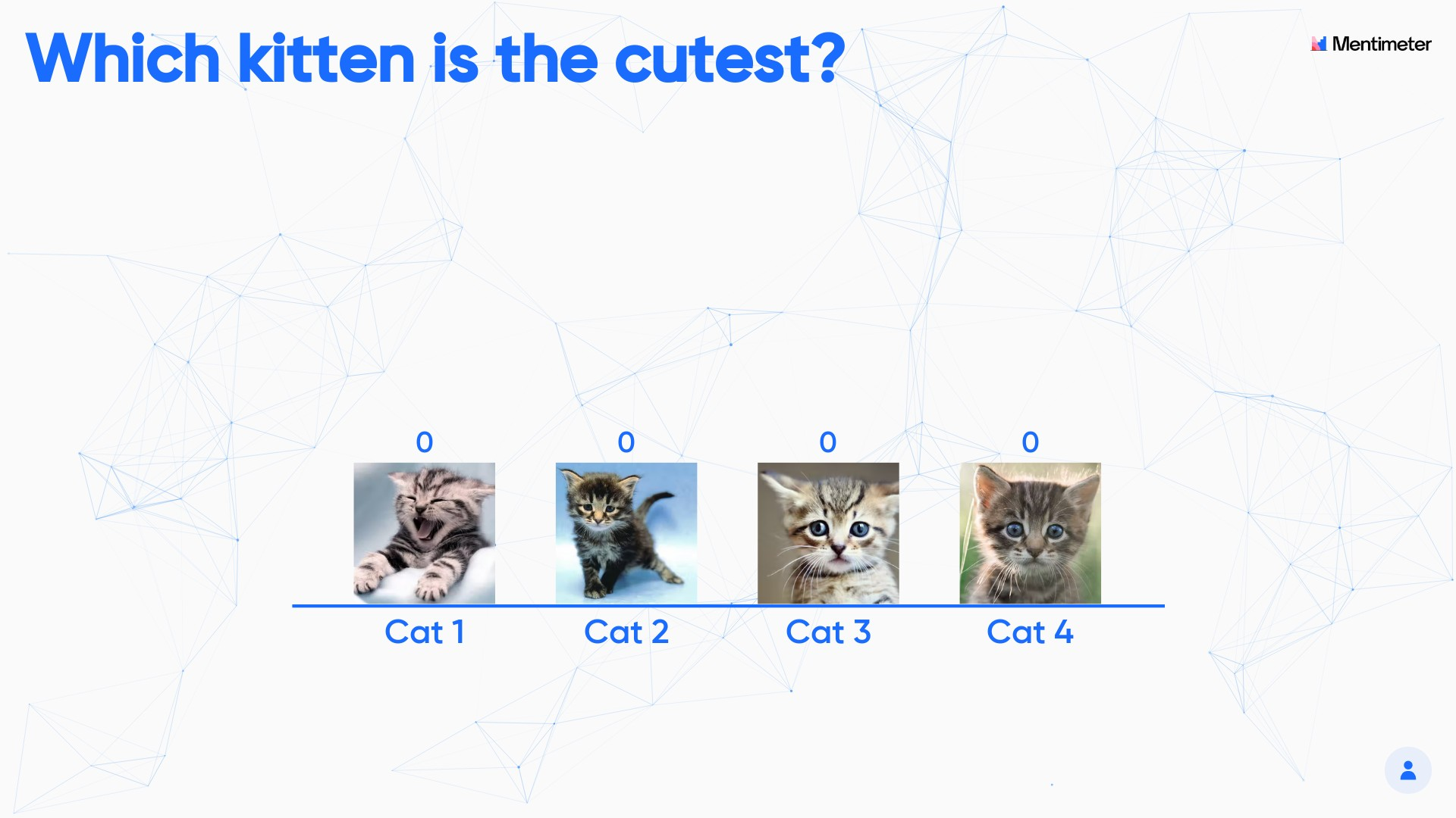 Vote for the cutest kitten